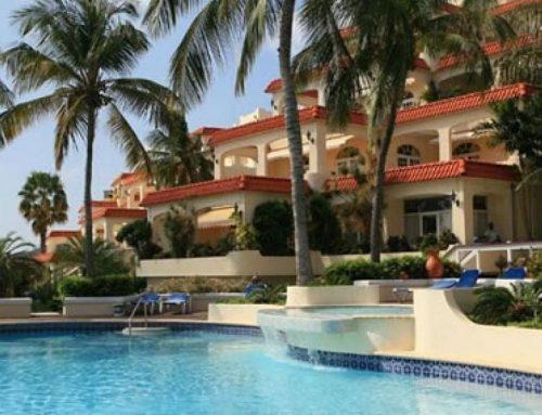 Royal Palm-Curacao